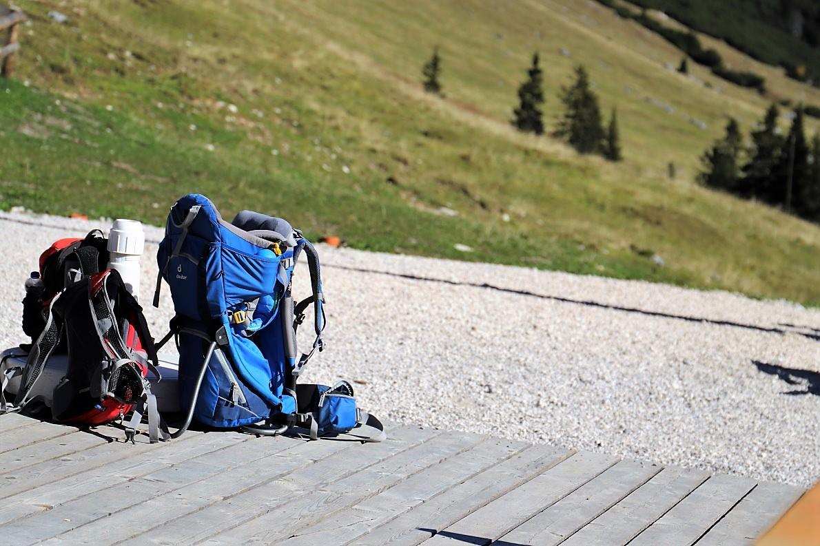 Almwanderer auf der Feldernalm. (Foto: Knut Kuckel)
